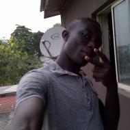 Profile picture of ibro